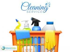 Cleaning-Tools-and-Gloves