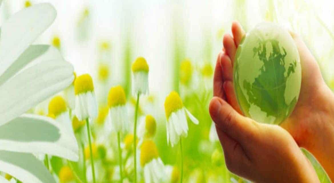 Green cleaning tips Montreal