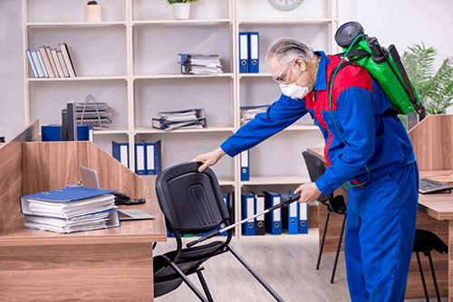 Disinfection services and Preventive Cleaning of Residential and Commercial Premises
